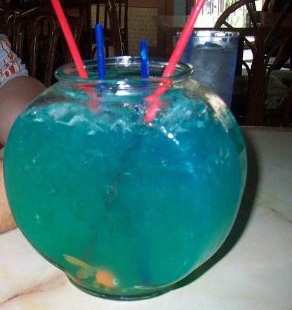 Fishbowl drink recipes for Fish bowls drinks